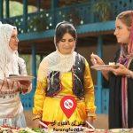 آشپزی در طبیعت : فیلم آموزش کباب ترد و برشته