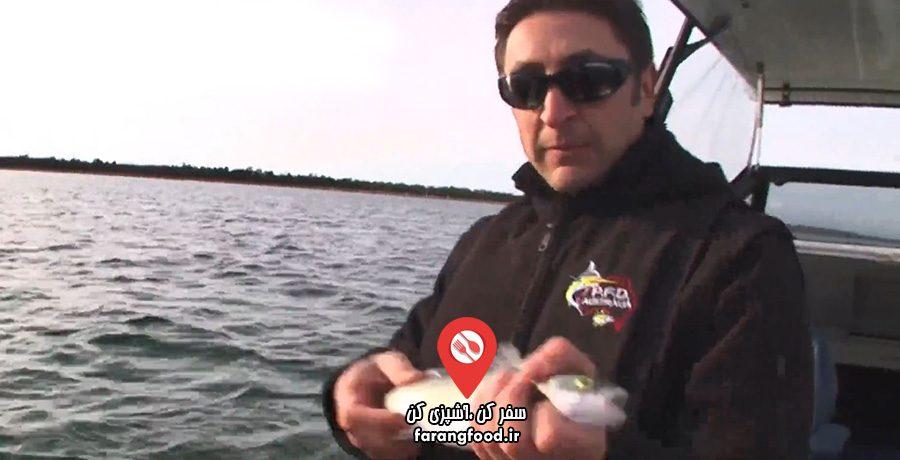 قایقرانی , ماهیگیری , غذاهای دریایی و سبک زندگی دریایی
